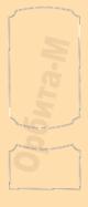 triunph-91-2